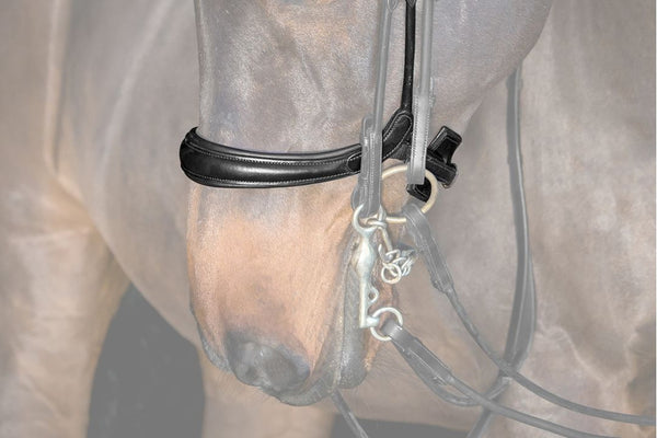 PS of Sweden Noseband Paragon
