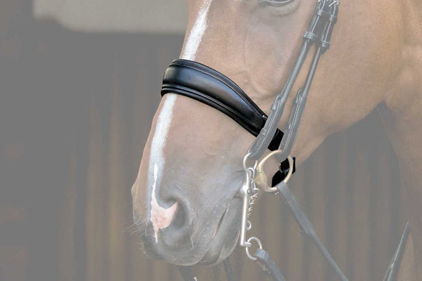 PS of Sweden Passage Noseband SALE ct