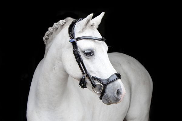 PS of Sweden  Pioneer Revolution Pony Bridle