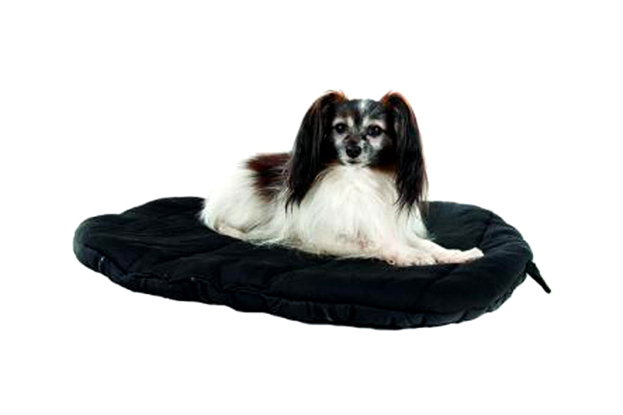Back On Track Therapeutic Dog Bed