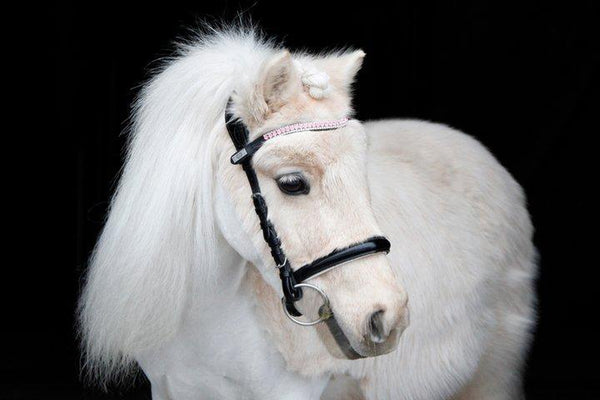 PS of Sweden Petite Supreme Bridle