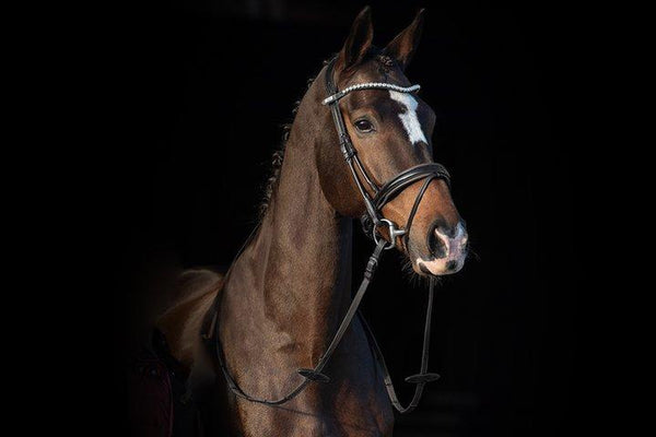 PS of Sweden Bridle Boss Non-Patent