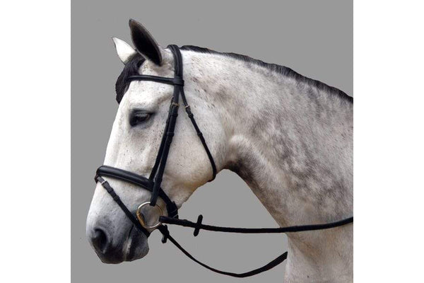 Thinline Dressage Black Padded Snaffle Bridle The Bossy