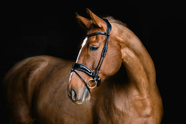 PS of Sweden Bridle Flying Change Deluxe Revolution (Custom Sizes)