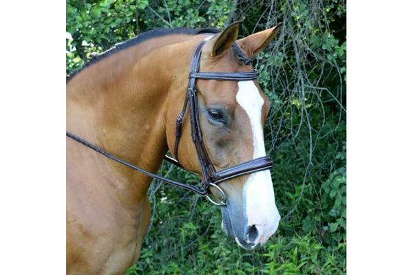 KL Select Red Barn Ocala Hunter Bridle