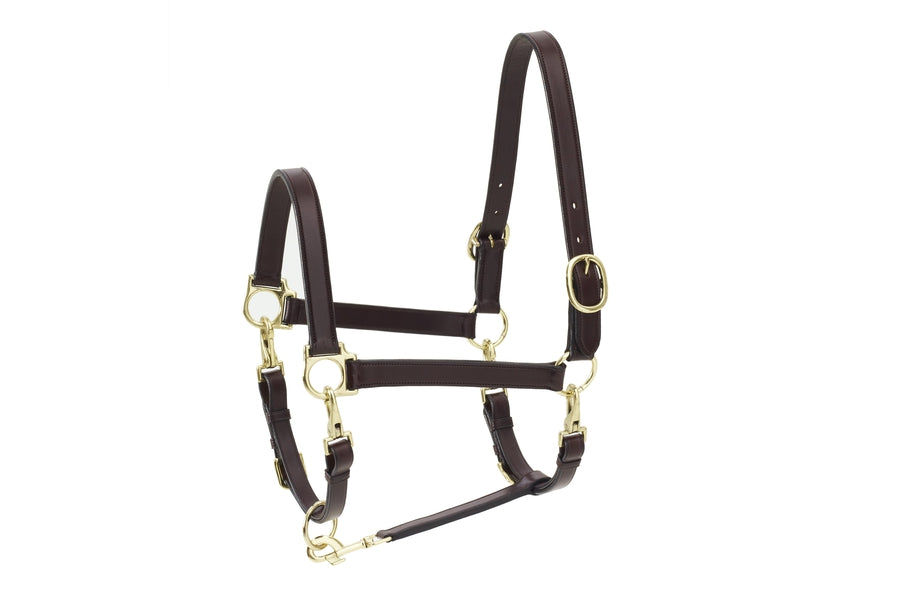 Ovation 4-Way Leather Grooming Halter