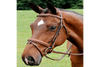 Arc de Triomphe Starman Bridle with Raised Fancy Reins