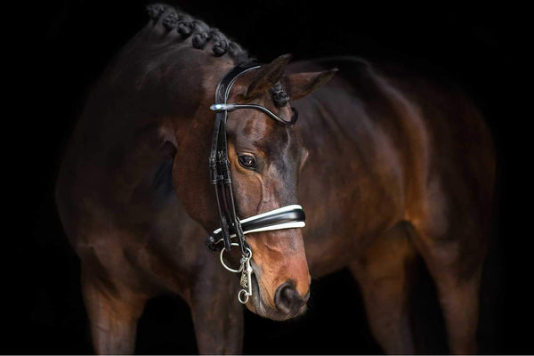 PS of Sweden Double Bridle GP