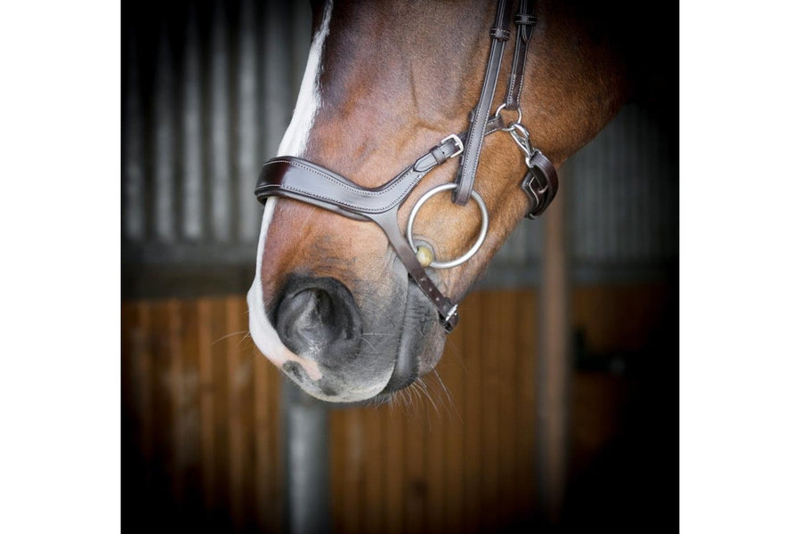 PS of Sweden Pioneer Revolution Bridle (Standard Sizes)