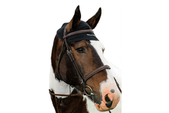 Back On Track Therapeutic Equine Head Cap