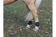 Back On Track Royal Fetlock Boots