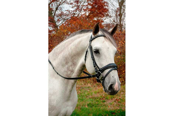 KL Select Piaffe Weymouth Bridle