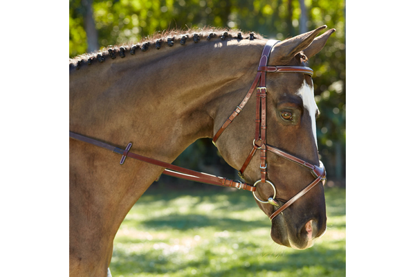 KL Select Italia Chase Figure 8 Bridle