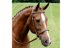 Arc de Triomphe Fox Hunt Bridle with Rubber Lined Reins