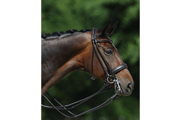 Passier Boston Double Bridle