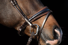 PS of Sweden Noseband Boss Brown Patent