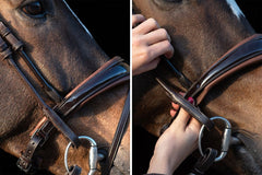 PS of Sweden Noseband GP Black Patent