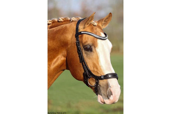 SD Design Crown Watch Out Anatomic Bridle with FREE reins SALE