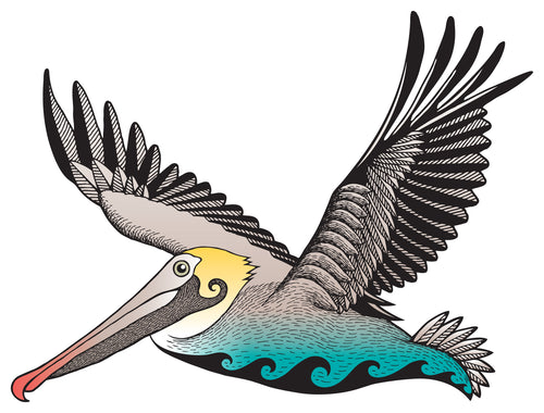 Brownish Pelican Sticker