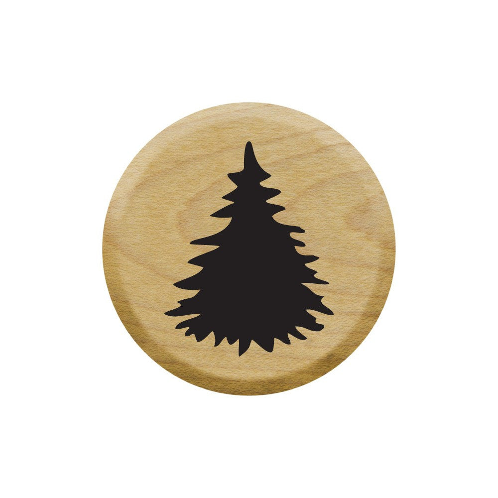 Tiny Fir Tree