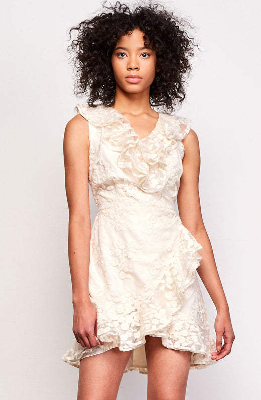 Harlow Embroidered Dress