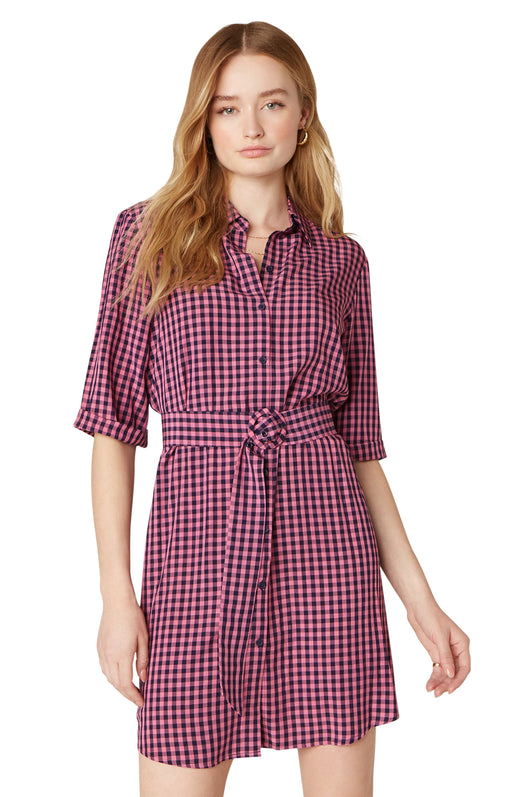 Model wearing gingham shirt dress