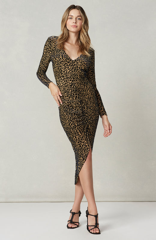 Better to Burnout Leopard Velvet Dress