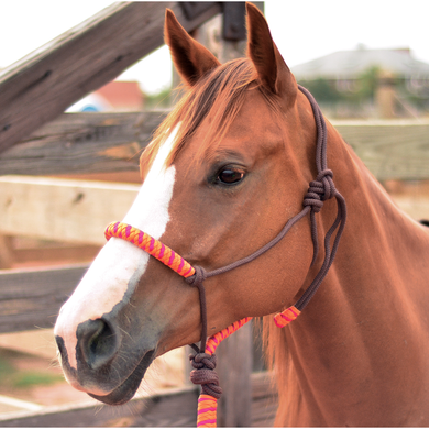 CLASSIC EQUINE ROPE HALTER AND LEAD