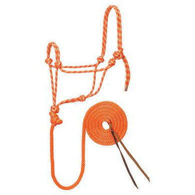 3/8 POLY ORANGE HALTER WITH 10 FT LEAD