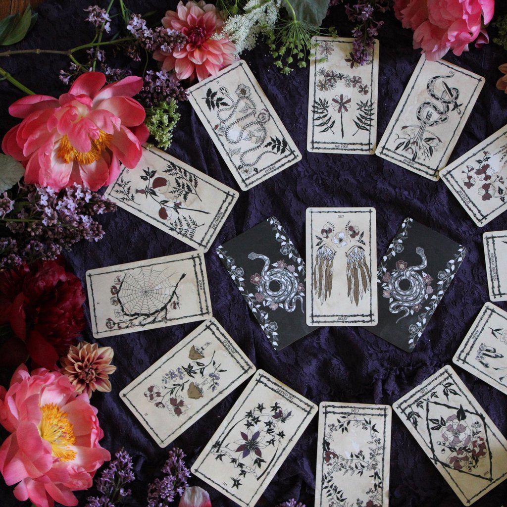 Ophidia Rosa Tarot by Leila + Olive