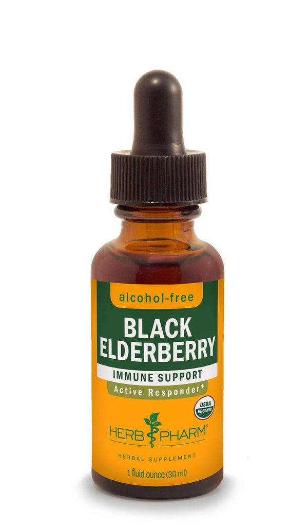 Herb Pharm Black Elderberry Glycerite 1oz.-Tinctures-The Scarlet Sage Herb Co.
