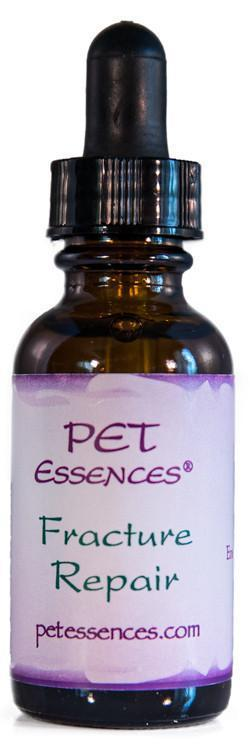 Energetic Pet Essences Fracture Repair-Flower Essences-The Scarlet Sage Herb Co.