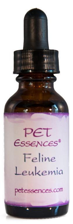 Energetic Pet Essences Feline Leukemia-Flower Essences-The Scarlet Sage Herb Co.