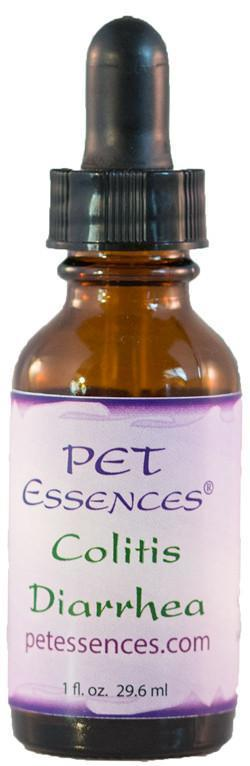 Energetic Pet Essences Colitis Diarrhea-Flower Essences-The Scarlet Sage Herb Co.