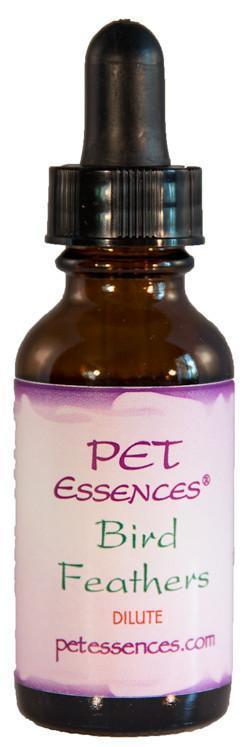 Energetic Pet Essences Bird Feathers-Flower Essences-The Scarlet Sage Herb Co.