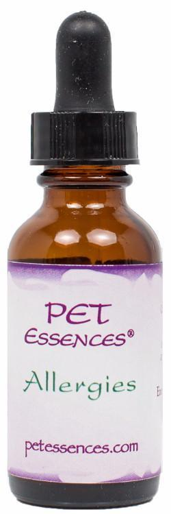 Energetic Pet Essences Allergies-Flower Essences-The Scarlet Sage Herb Co.