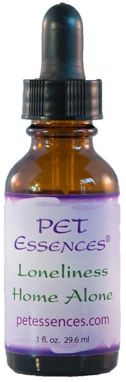 Energetic Pet Essences Loneliness Home Alone-Flower Essences-The Scarlet Sage Herb Co.