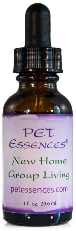 Energetic Pet Essences New Home Group Living-Flower Essences-The Scarlet Sage Herb Co.