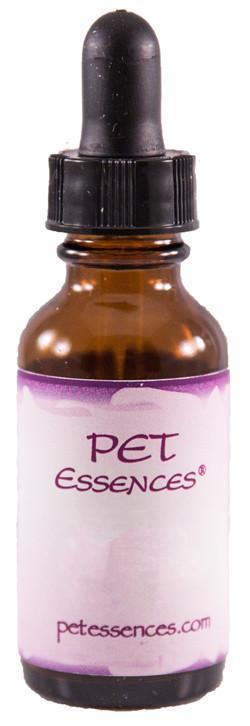 Energetic Pet Essences Thyroid Balance-Flower Essences-The Scarlet Sage Herb Co.