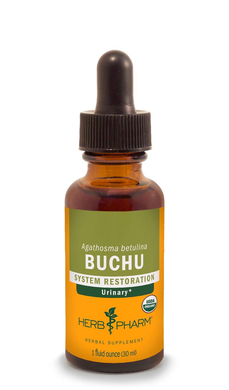 Herb Pharm Buchu 1oz.-Tinctures-The Scarlet Sage Herb Co.
