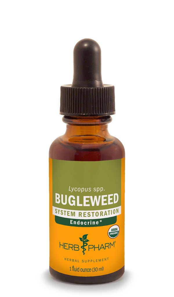 Herb Pharm Bugleweed 1oz.-Tinctures-The Scarlet Sage Herb Co.