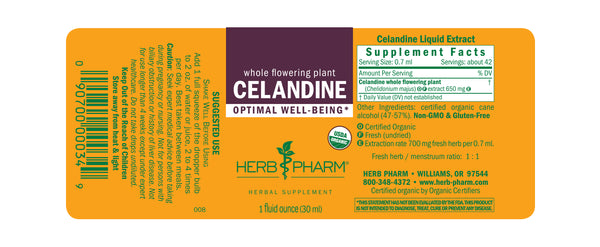 Herb Pharm Celandine 1oz-Tinctures-The Scarlet Sage Herb Co.