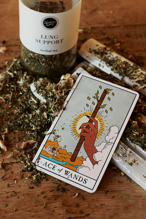 Scarlet Sage Lung Support Tea-Scarlet Sage Teas & Herb Blends-The Scarlet Sage Herb Co.