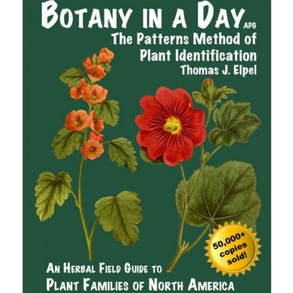 Botany In A Day by Thomas J. Elpel-Books-The Scarlet Sage Herb Co.