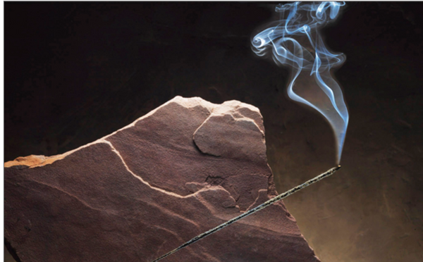 Fred Solls Albuquerque Mountain Cedar Incense-Incense / Smudges-The Scarlet Sage Herb Co.
