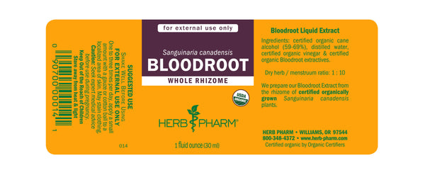 Herb Pharm Bloodroot 1oz.-Tinctures-The Scarlet Sage Herb Co.