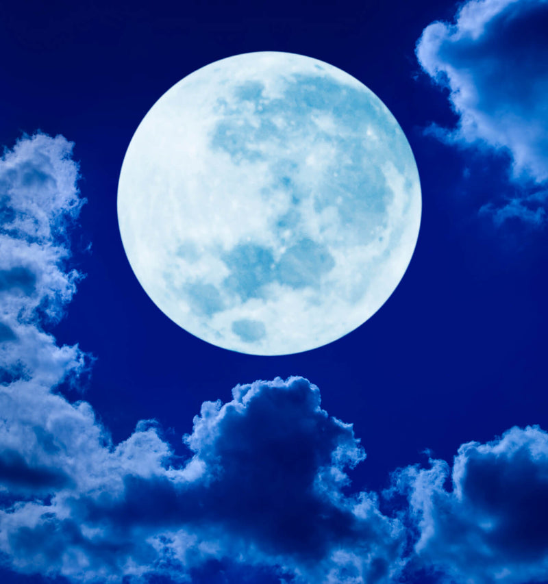 Daylong Full Moon Intensive - May 18, 1:30pm-6pm - The Scarlet Sage Herb Co.