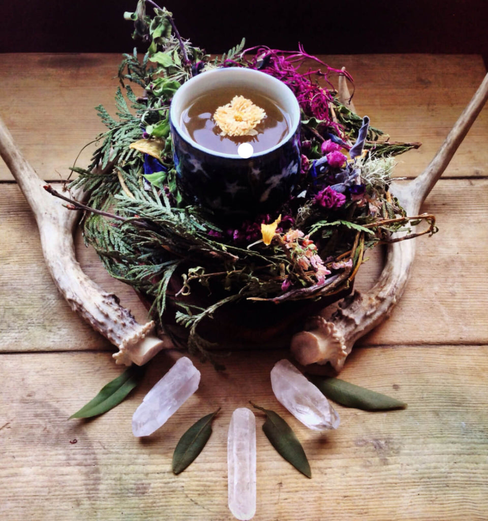 Autumnal Equinox Celebration - September 21st, 6:30-8:30pm - The Scarlet Sage Herb Co.