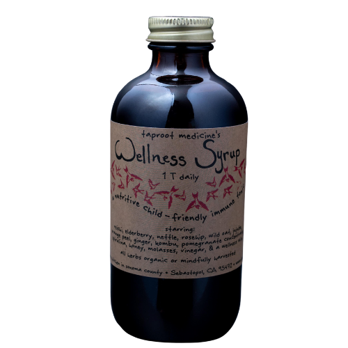 Taproot Wellness Syrup 8oz-Tinctures-The Scarlet Sage Herb Co.