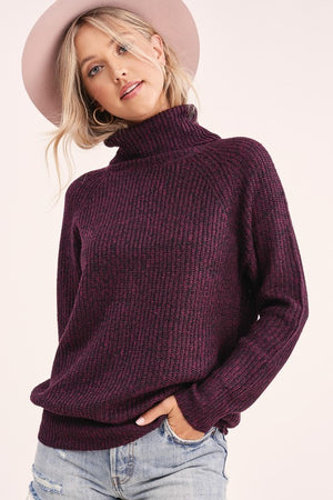 Hope Turtleneck Sweater
